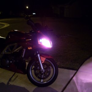 HID - Xtreme Pink